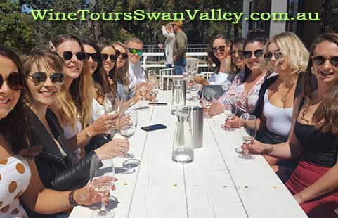 Wine Tours Near Perth's Swan Valley.